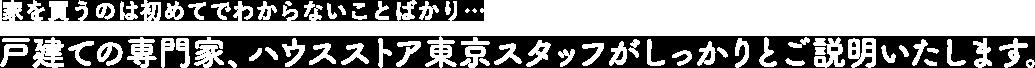 家を買うのは初めてでわからないことばかり… 戸建の専門家、ハウスストア東京スタッフがしっかりとご説明いたします。